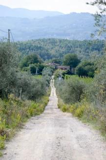 Italy 2014.