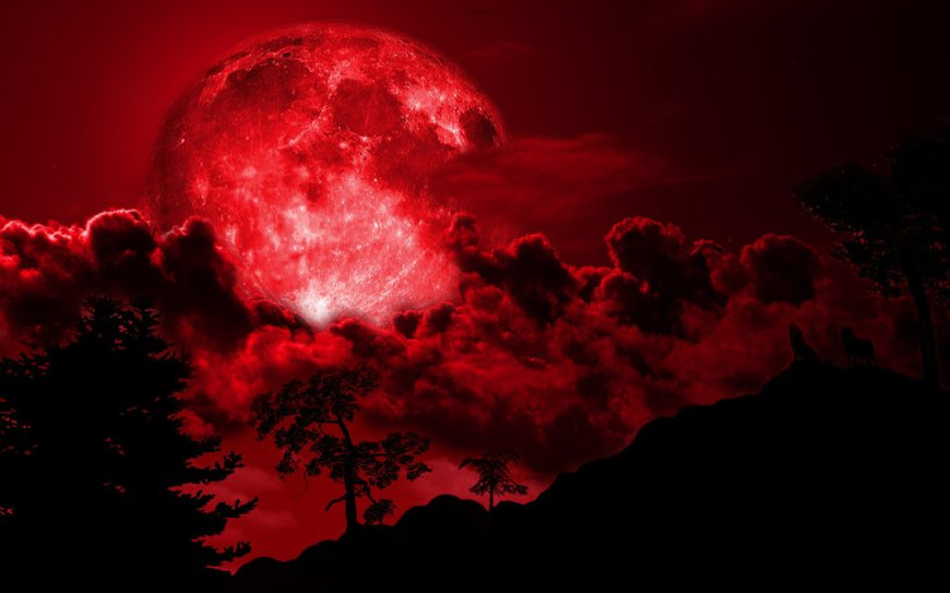 wolves_howling_at_red_full_moon_night_by_christophepd5xslnj